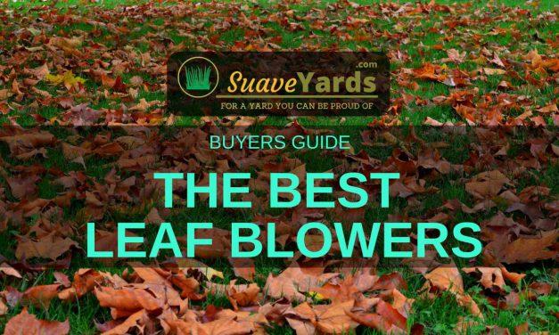 Best Leaf Blowers 2019