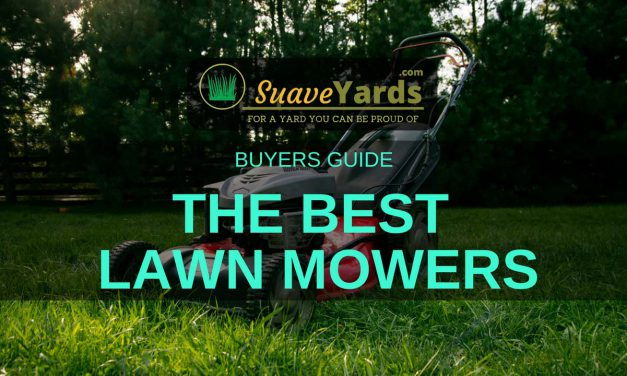 Best Lawn Mowers 2019