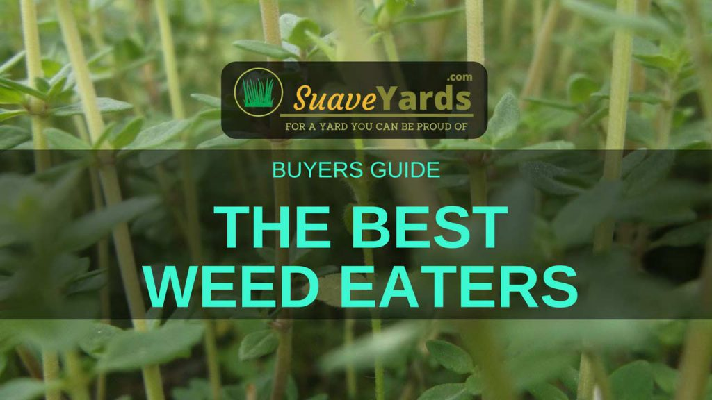 Best Weed Eaters of 2018
