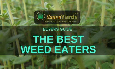 Best Weed Eaters 2019