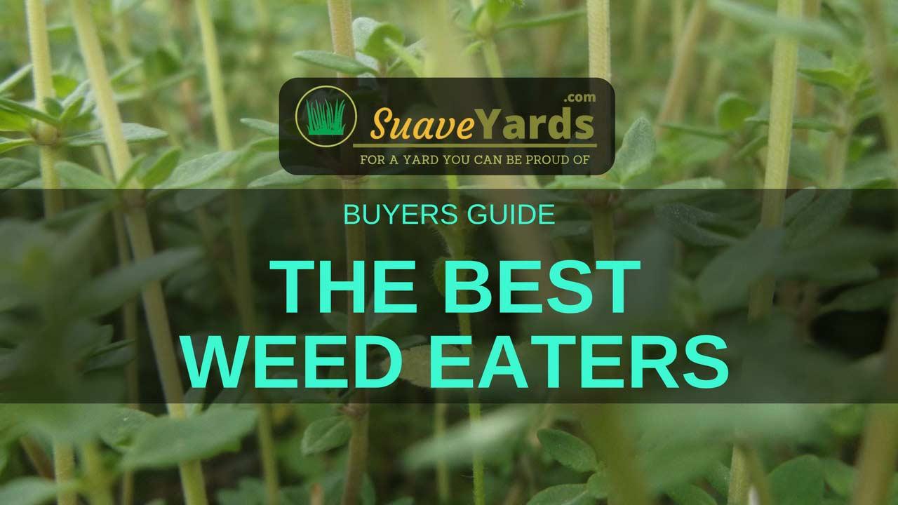 Best Weed Eaters of 2018