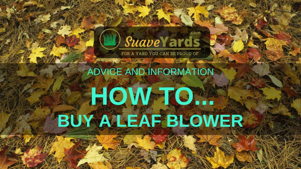 How to buy a leaf blower