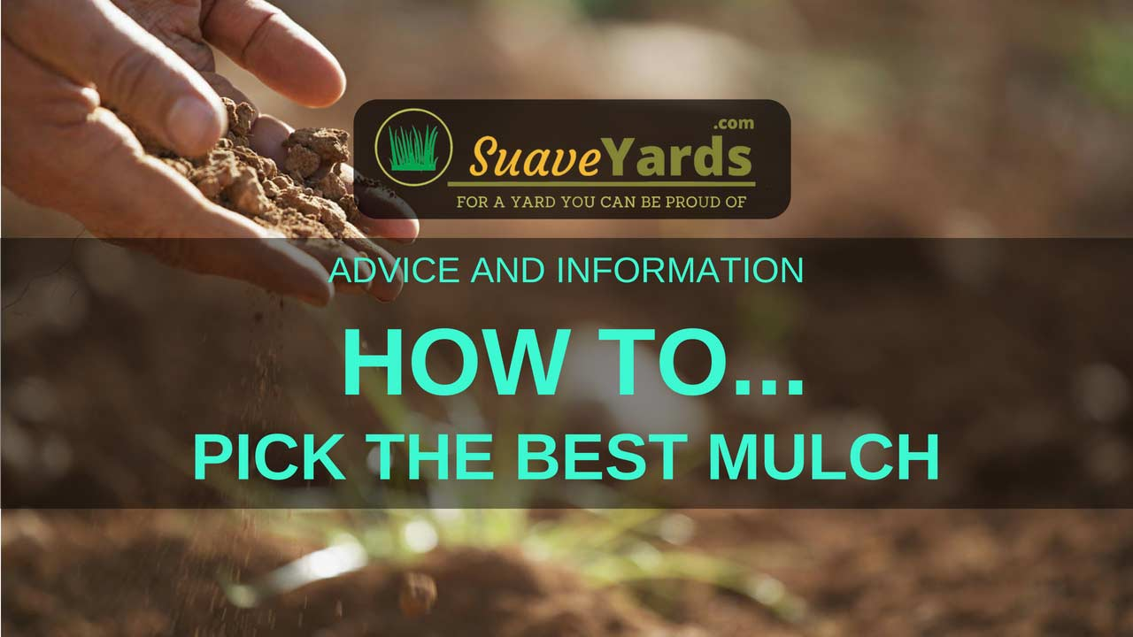 Pick the best mulch for landscaping