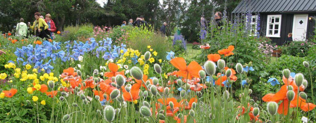 Akureyri Gardens