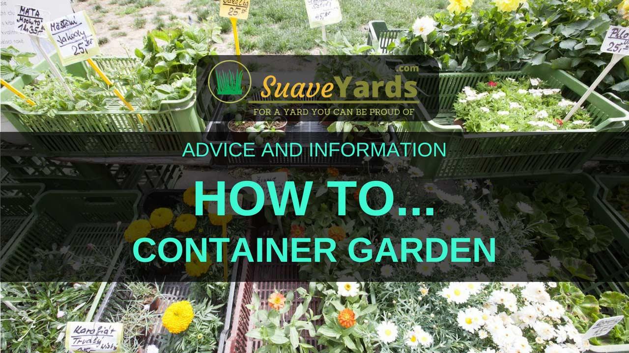How to container garden header