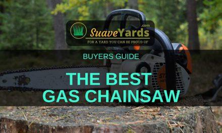 Best Gas Chainsaw 2019