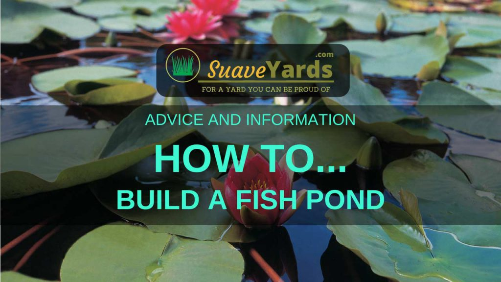 How To Build A Fish Pond 5 Easy Steps For 2019