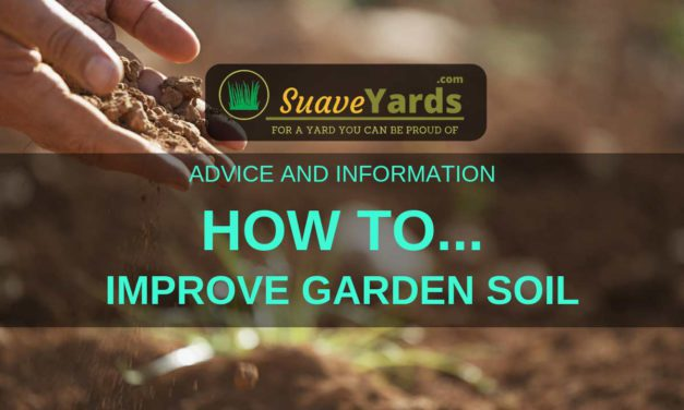 How To Improve Garden Soil (A Quick And Easy Guide)