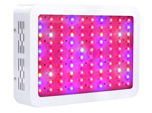 King Plus 1200W LED Grow Light