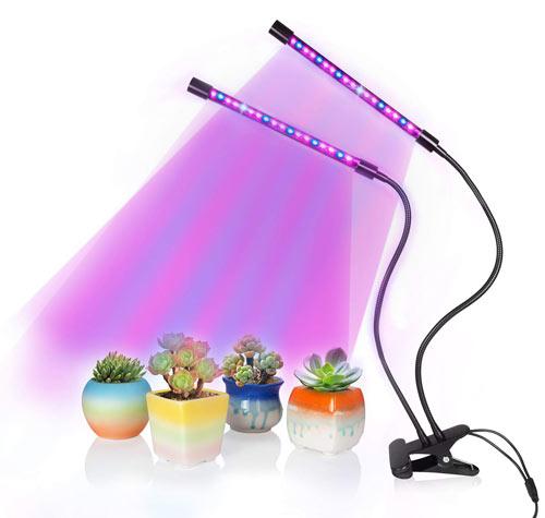 SOLOFISH Dual Head LED Light