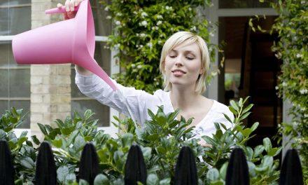 Small Backyard Garden Ideas – 9 Ways To Transform Your Space