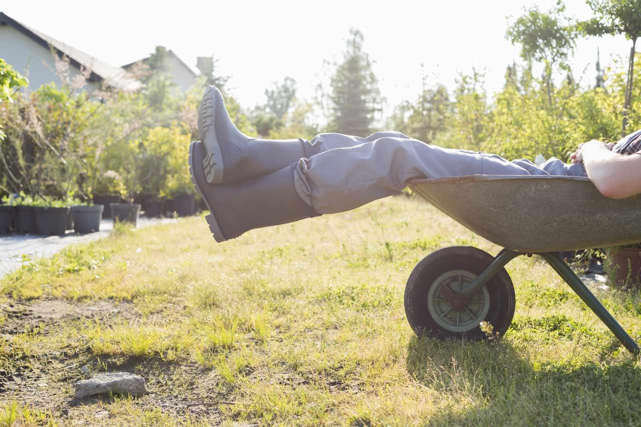 Man in wheelbarrow in sun
