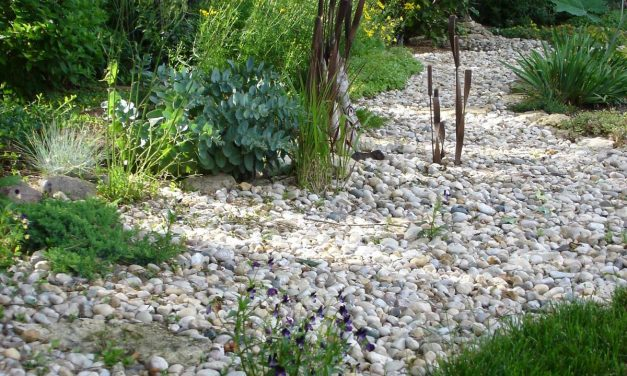 Dry Creek Landscaping Ideas – 8 (Fantastic) Tips!