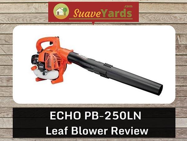 Echo PB 250 header