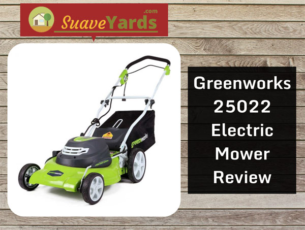 Greenworks-25022-mower