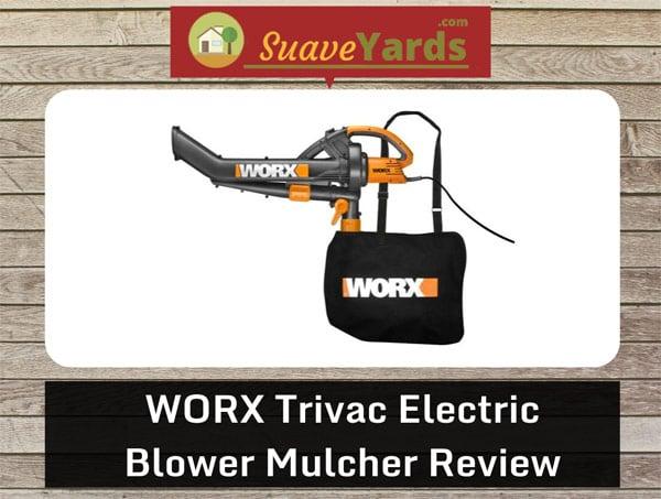WORX-Trivac