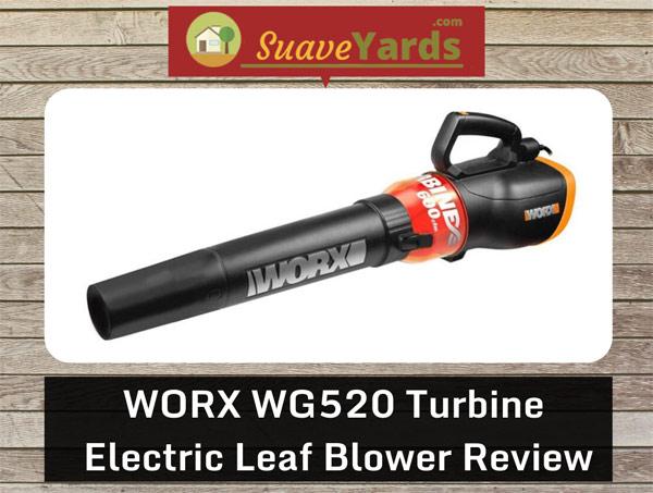 WORX-WG520