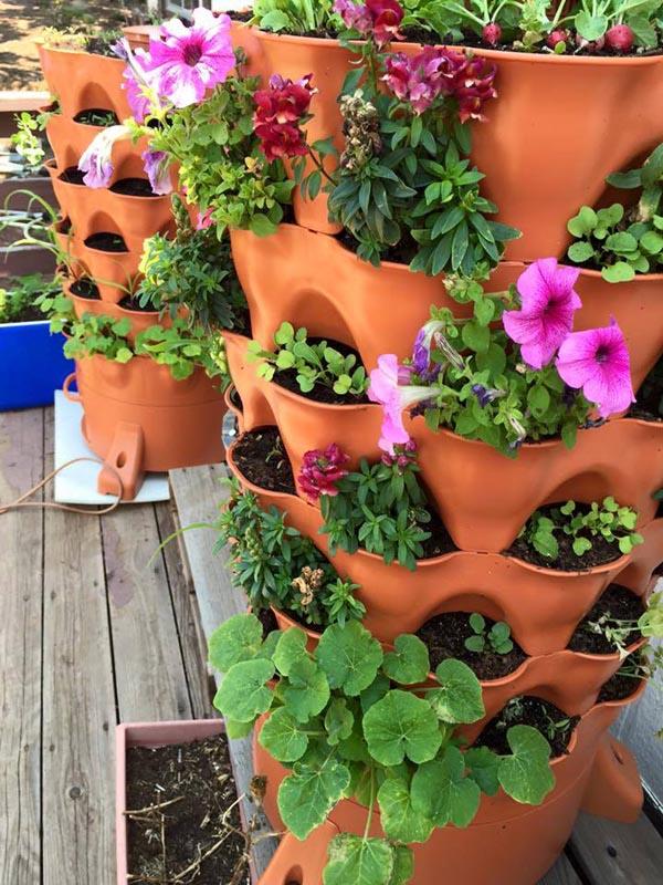 Garden Tower 2 growing plants