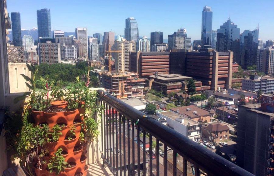 Garden Tower 2 on balcony