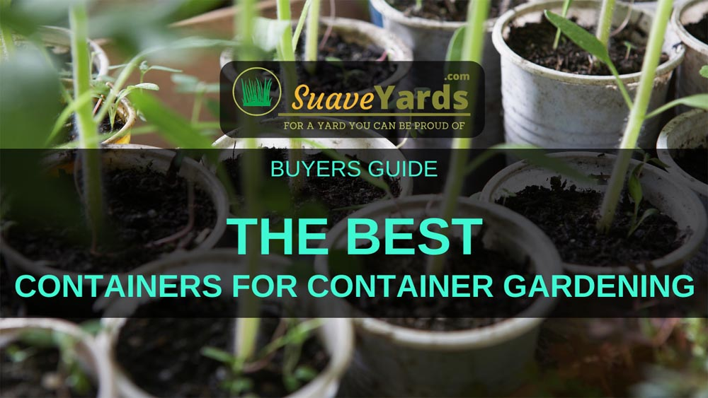 Best Containers for Container Gardening