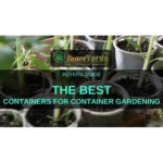 Best containers