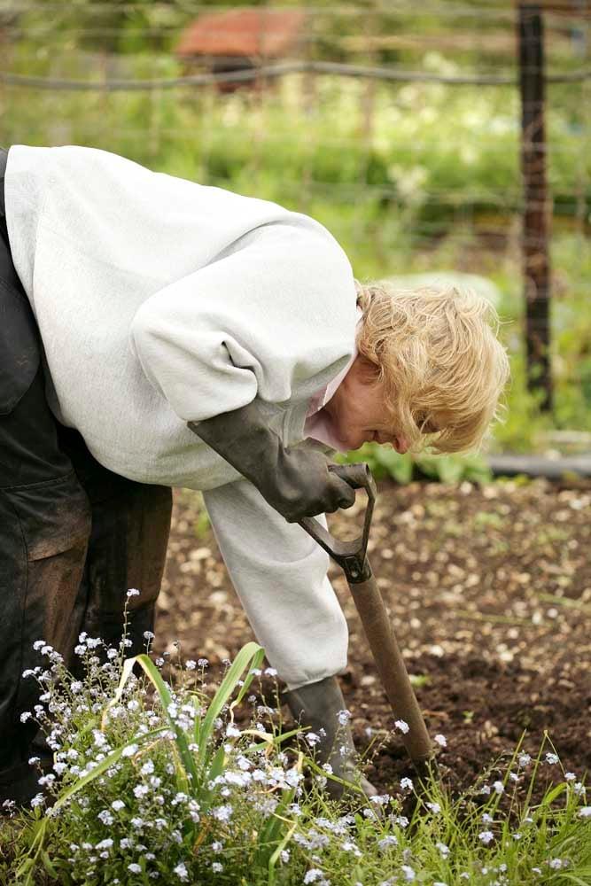 Elderly lady weeding