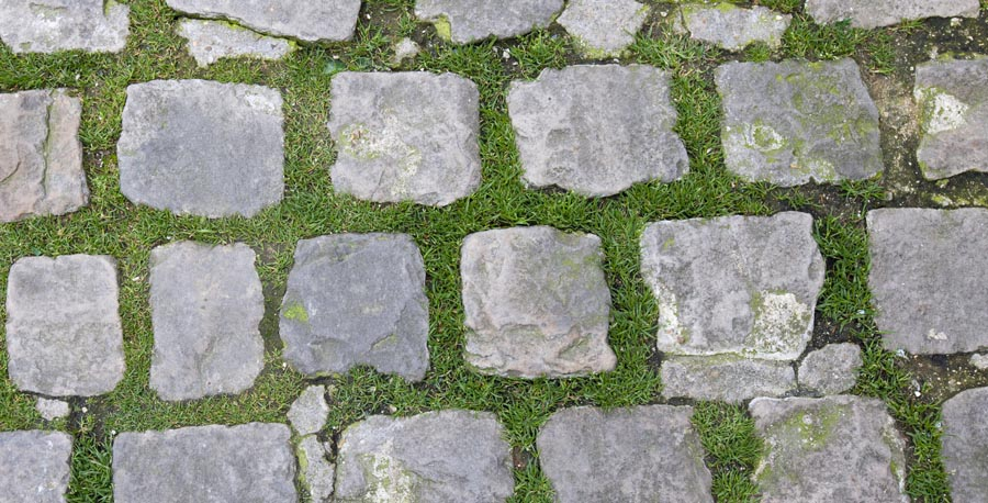 Close-up view of Stone Path with grass growing through