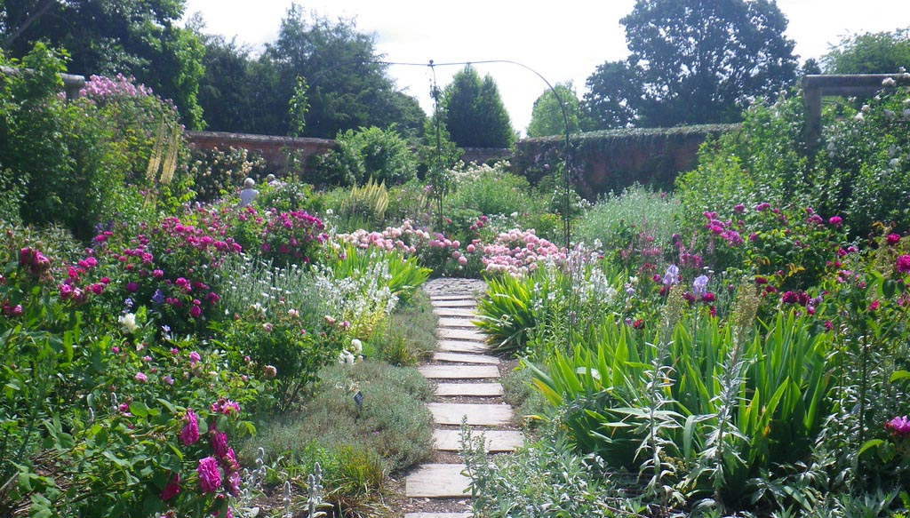 Garden with paving