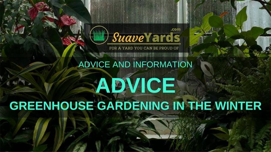 Greenhouse gardening in the winter header sml