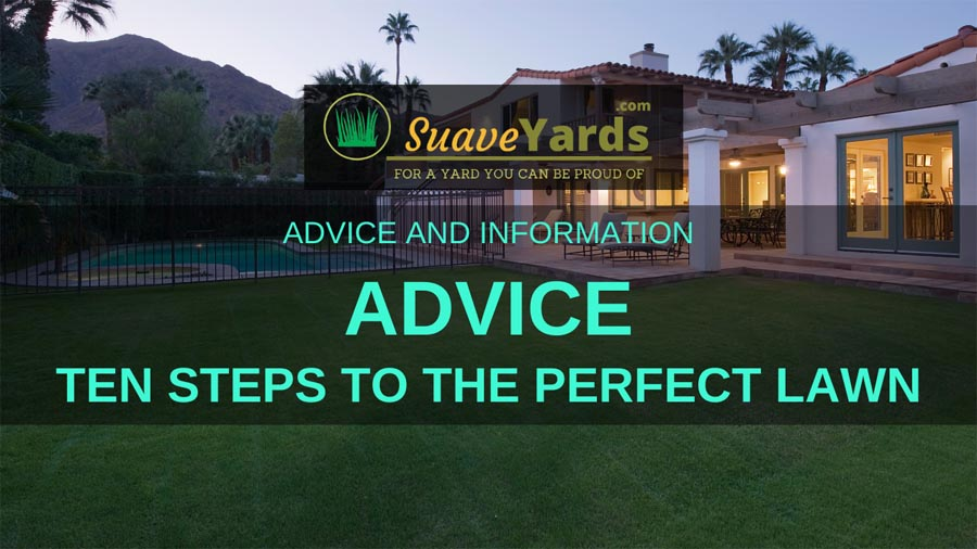 Ten steps to the perfect lawn