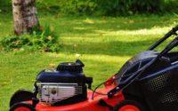 Lawn mower on cut lawn
