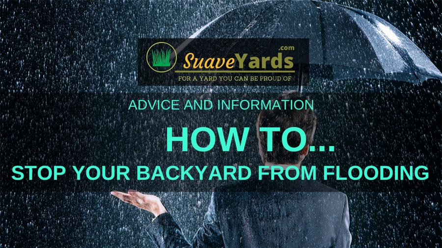 How to stop your backyard from flooding