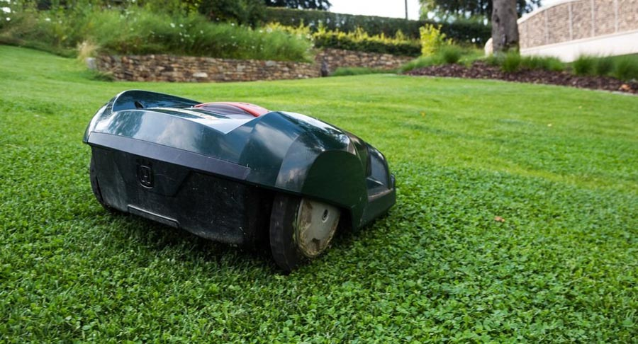 Robotic lawn mower from behind on lawn
