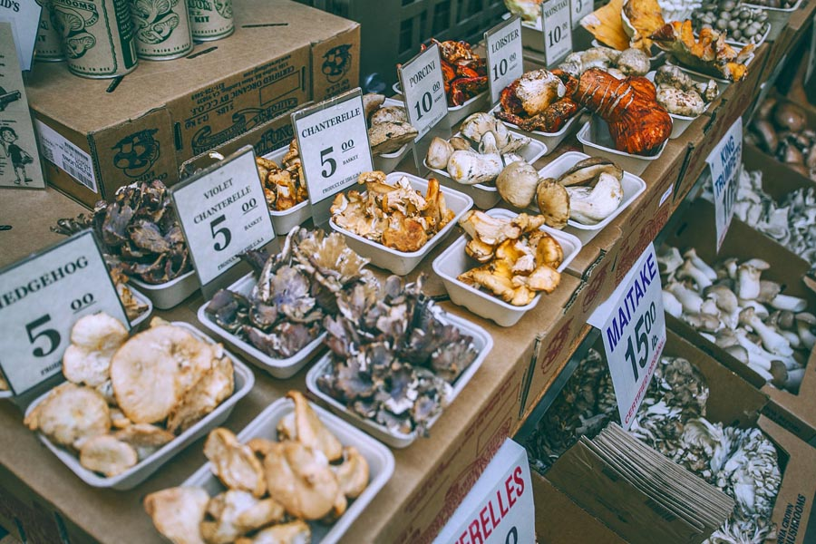Variety of mushrooms for sale in market