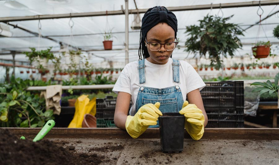 Lady planting seeds