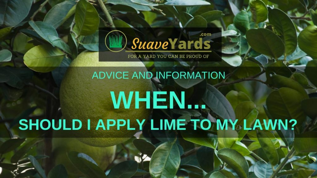 When should I apply lime to my lawn
