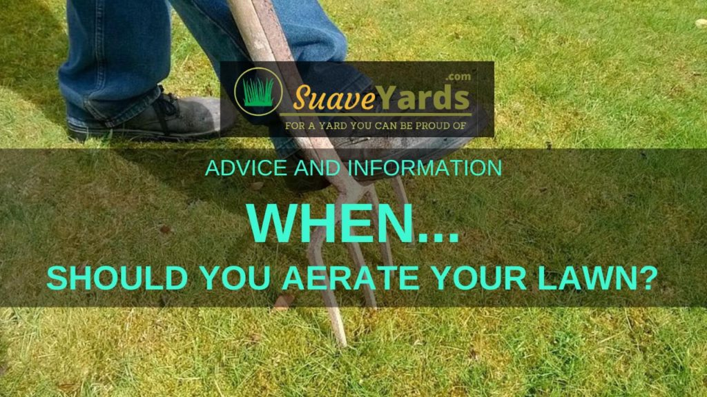 When should you aerate your lawn header