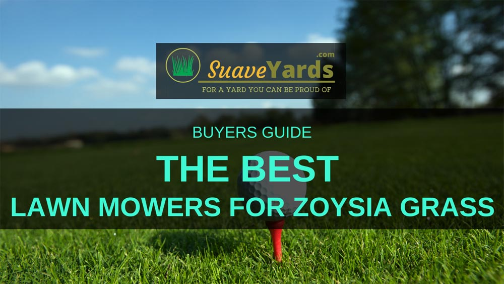 Best Lawn Mowers for Zoysia Gras headers