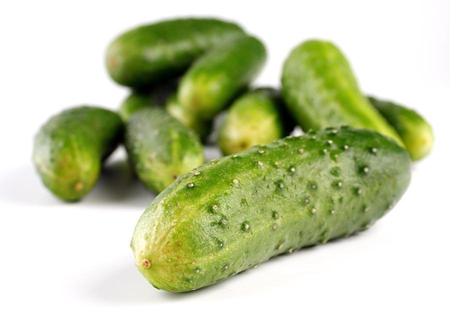 Cucumbers on white background - studio shot