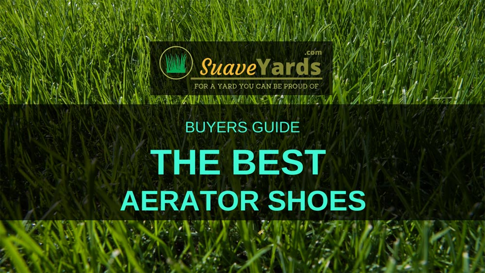Best lawn aerator shoes header