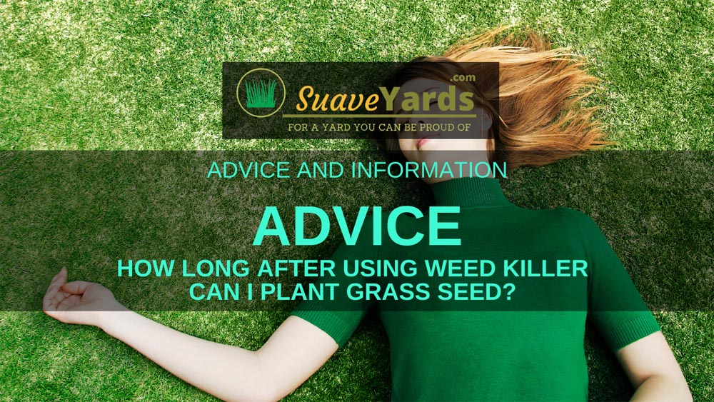 How long after planting weed killer can I use grass seed header