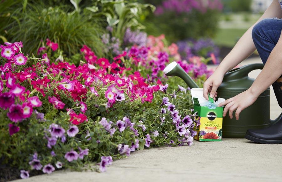 Person using fertilizer on plants