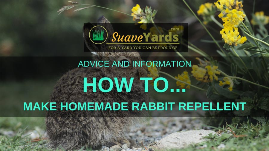 How to make homemade rabbit repellent