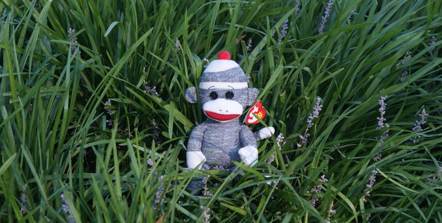 Monkey toy in grass