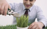 Man cutting plant in cup