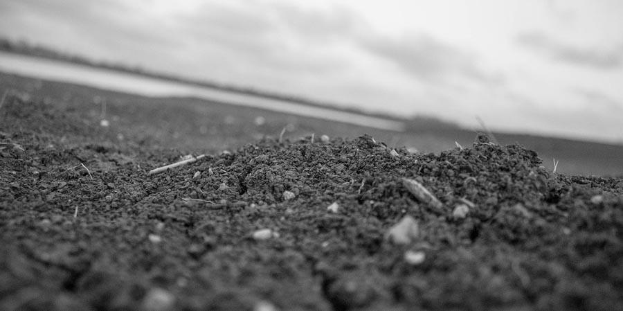 Rocks in soil