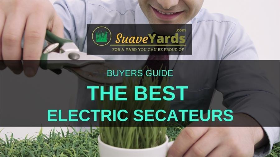 The Best Electric Secateurs