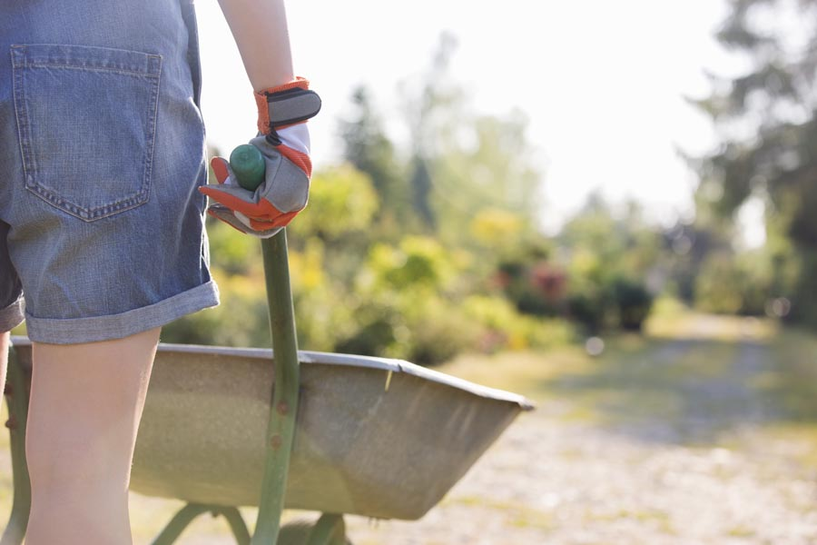 Midsection rear view of female gardener pushing wheelbarrow at plant nursery